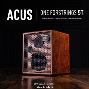 #repost @cinguitars   #acussound #acousticguitar #acousticamplification #oneforstrings